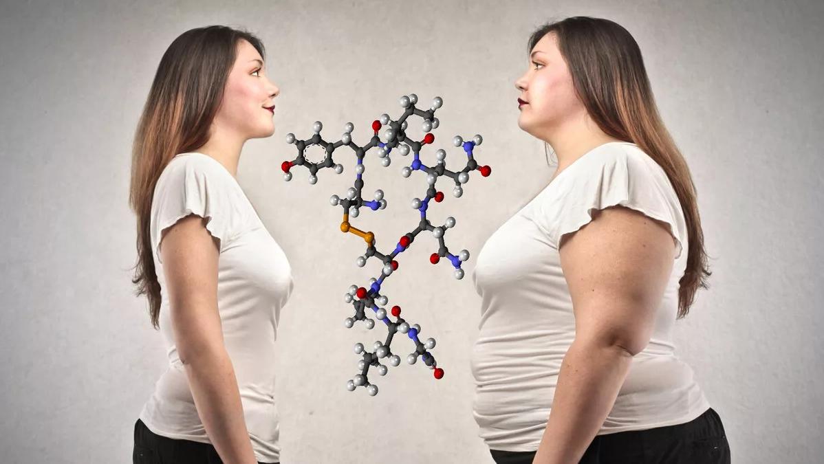 10 гормонов, которые влияют на наш вес